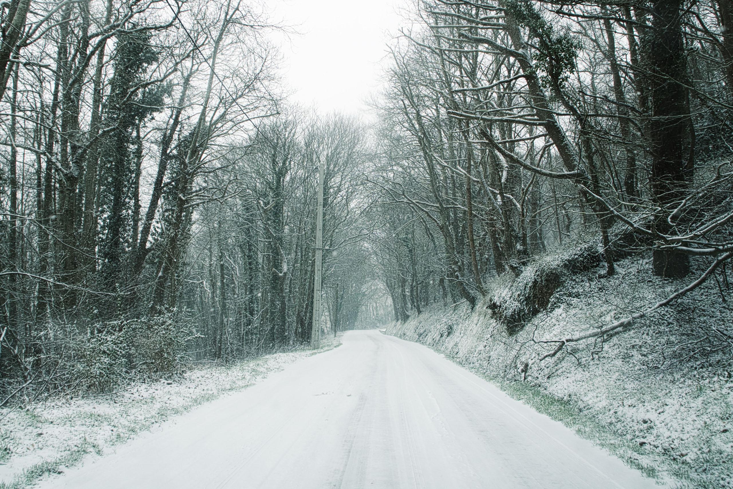 It's snowing, everyone PANIC!